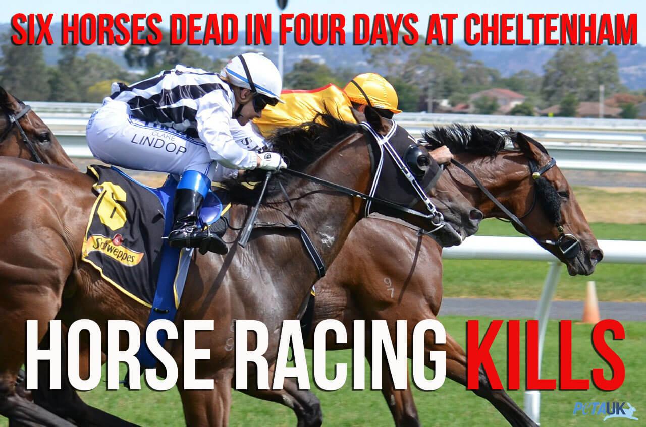 Horse-Racing-Kills-3