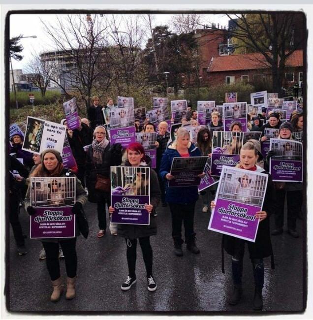 Karolinska Protest