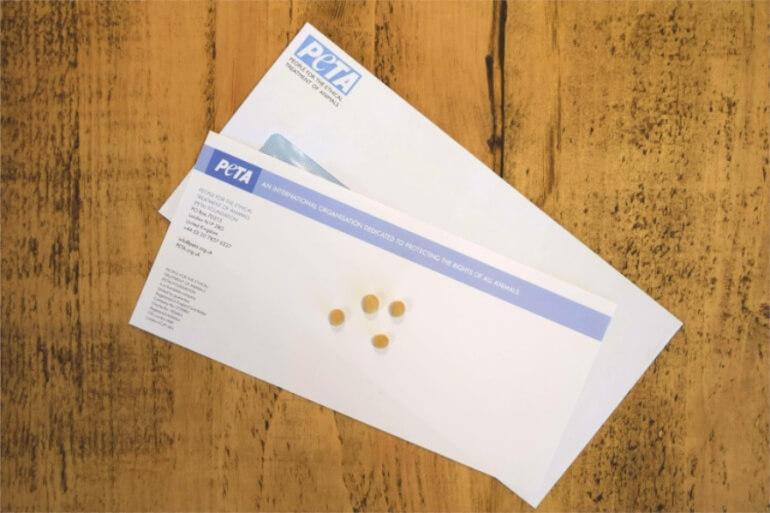 Soya Bean Dairy Letter