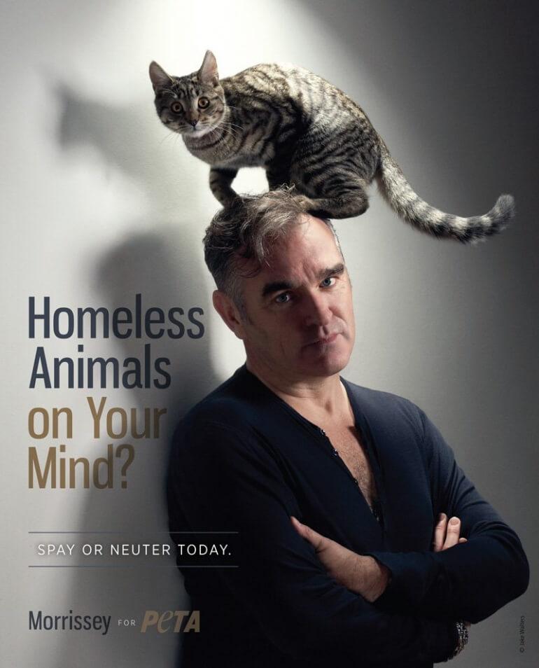 Morrissey PETA ad