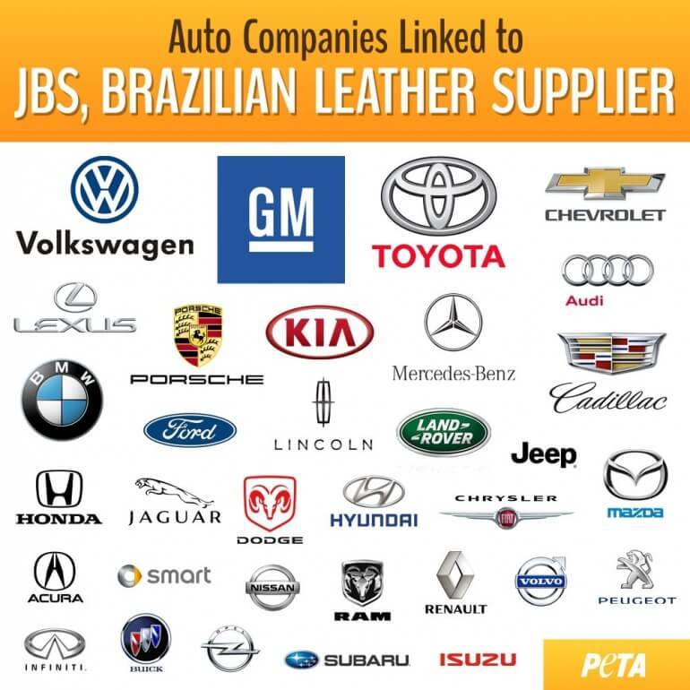 JBS linked car company infographic