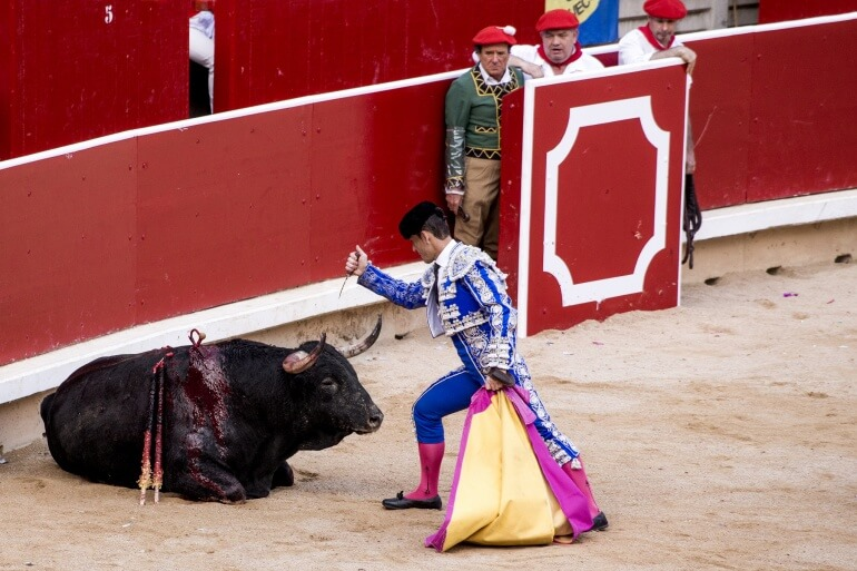Bullfighting | Animals Are Not Ours to Use for Entertainment