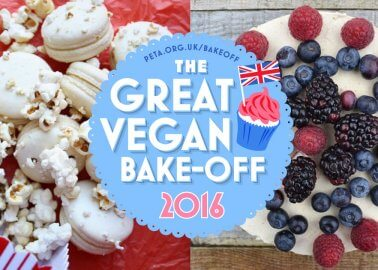 Great Vegan Bake-Off 2016 – the Winner