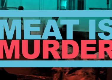 'Meat Is Murder' as You've Never Experienced It Before