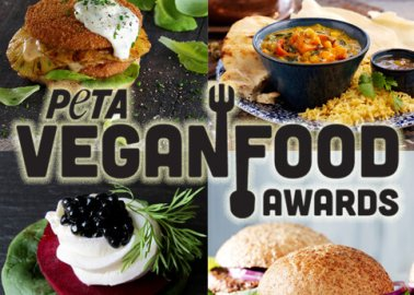 Vegan Food Awards 2016 – Check Out the Best Vegan Products of the Year