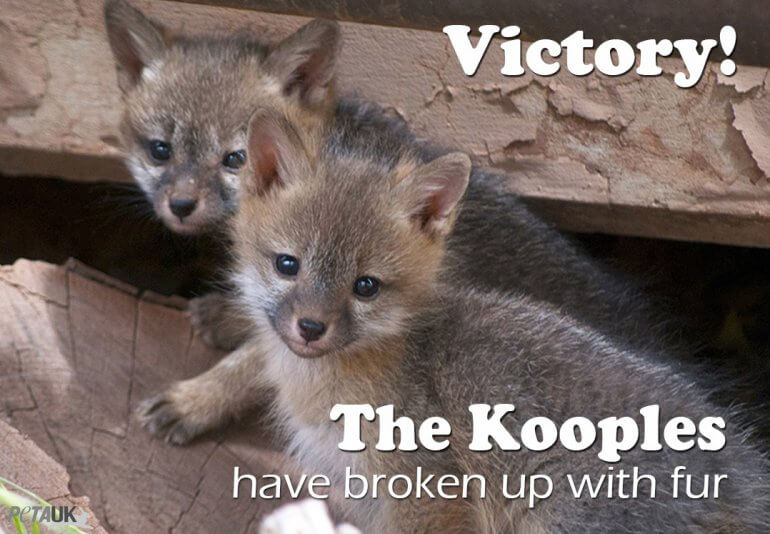 The Kooples Fur Victory