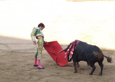 Huge Step Backwards as Catalonia's Ban on Bullfighting Is Overturned