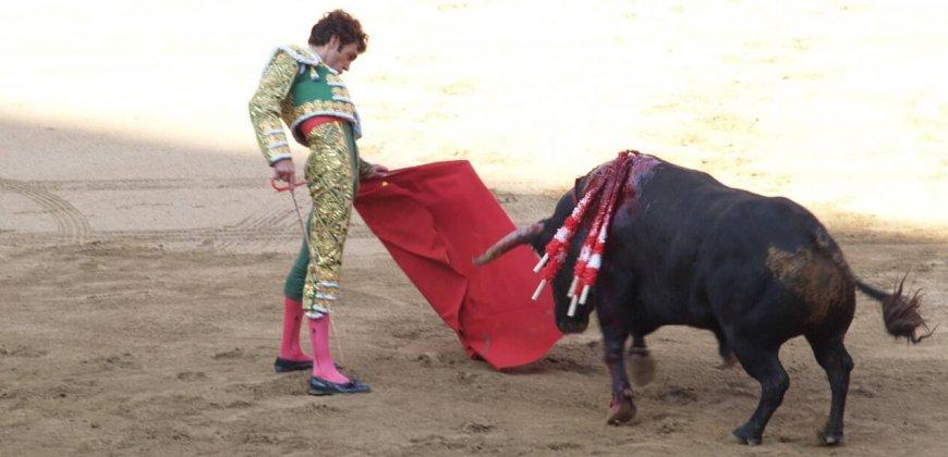 bullfight-cc0