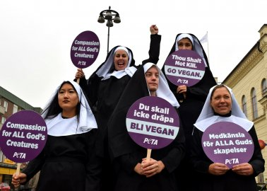 We Sent These 'Nuns' to Meet the Pope in Lund