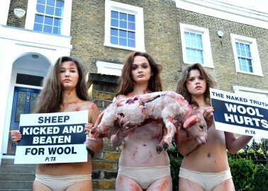 Why Did We Send Three 'Bruised and Bloodied' Models to the Opening of British Wool Week?