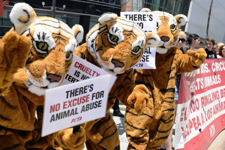 Ringing Protest Circus
