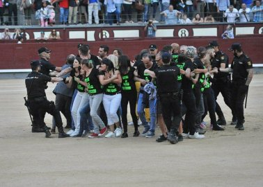 'Stop Killing, Please': Activists Jump Into Bullring in Madrid