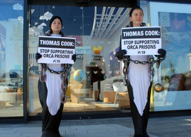 Chained-Up 'Orcas' Tell Thomas Cook to 'Stop Supporting Orca Prisons'