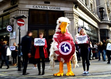 PETA 'Goose' Protests Opening of Flagship Canada Goose Store on London's Regent Street