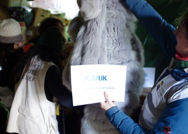 PETA Delivers Fur Coats to Refugees in Lesvos
