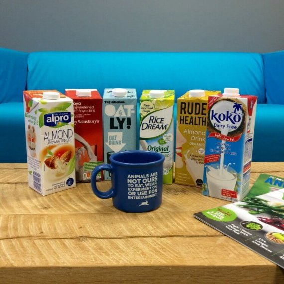 How to Choose a Plant-Based Milk