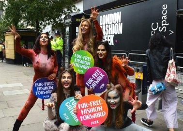 Activist 'Cats' Celebrate Fur-Free Catwalks at London Fashion Week