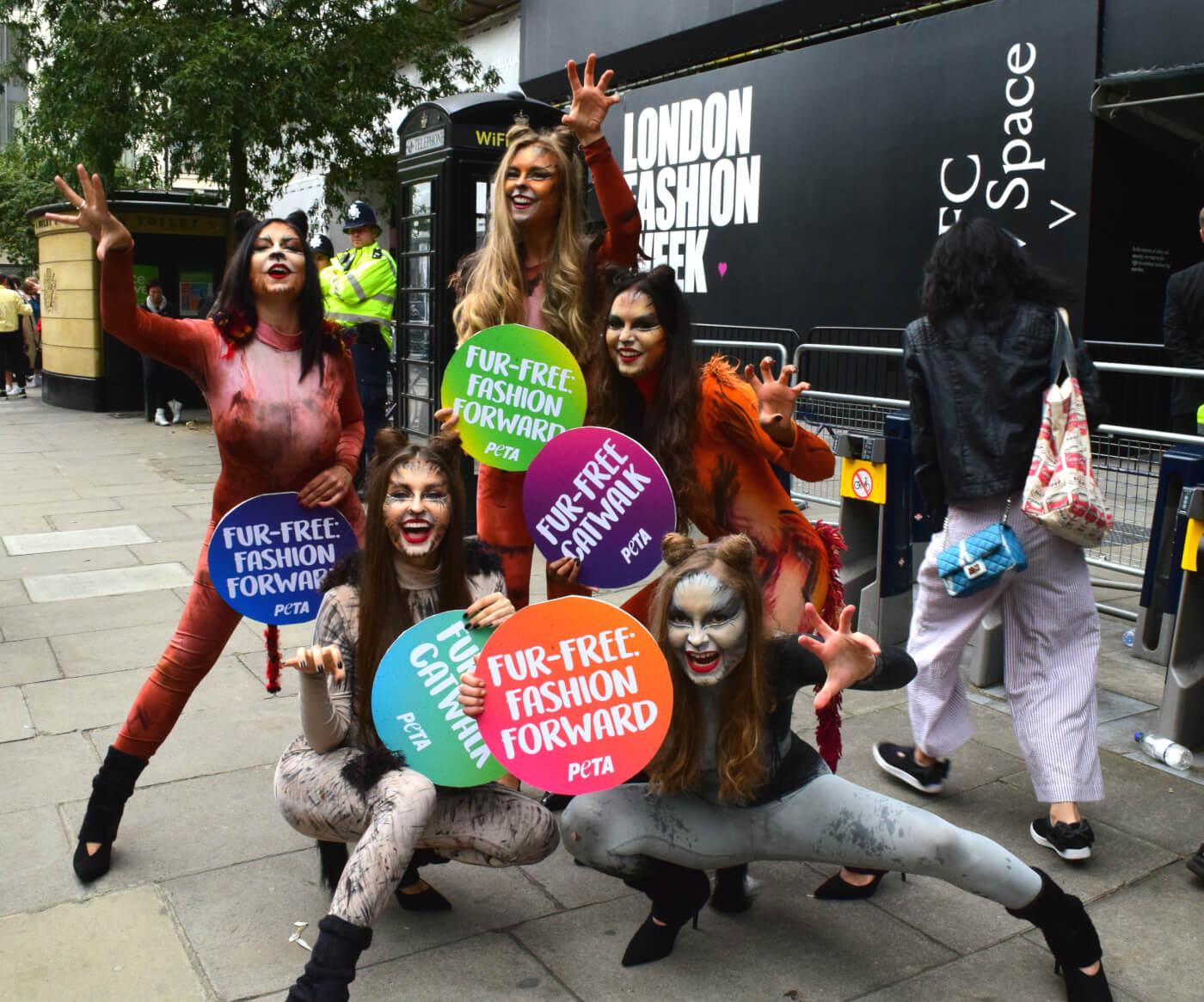 Activist Cats Celebrate Fur Free Catwalks At London Fashion Week