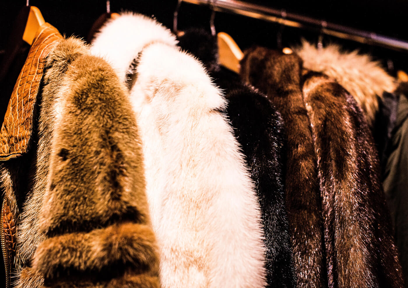 PETA US Is Taking Calls for a Fur Ban to the Farfetch Boardroom
