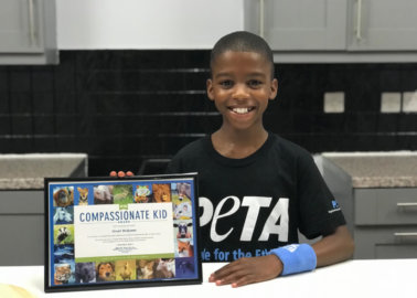 12-Year-Old Vegan Chef Omari McQueen Calls For End to Mandatory Meat in School Meals