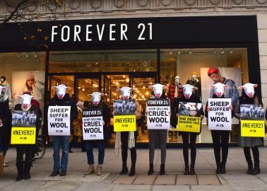 PETA Supporters Urge Forever 21 to Stop Selling Wool