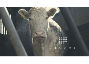 BREAKING: Pro-Vegan Film '73 Cows' Wins BAFTA