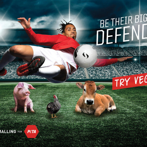 Chris Smalling Jumps to Animals' Defence in New PETA Vegan Ad
