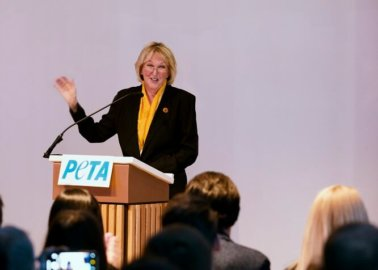 PETA Founder Says 'We Are ALL Animals' at Sold-Out London Event
