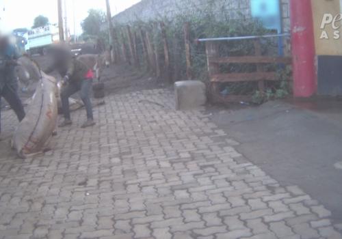 PETA Asia Ejiao Investigation Injured donkey dumped outside slaughterhouse Injured donkey dumped outside slaughterhouse