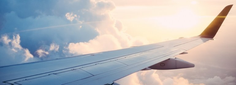 Urge Airlines to Offer Vegan Food