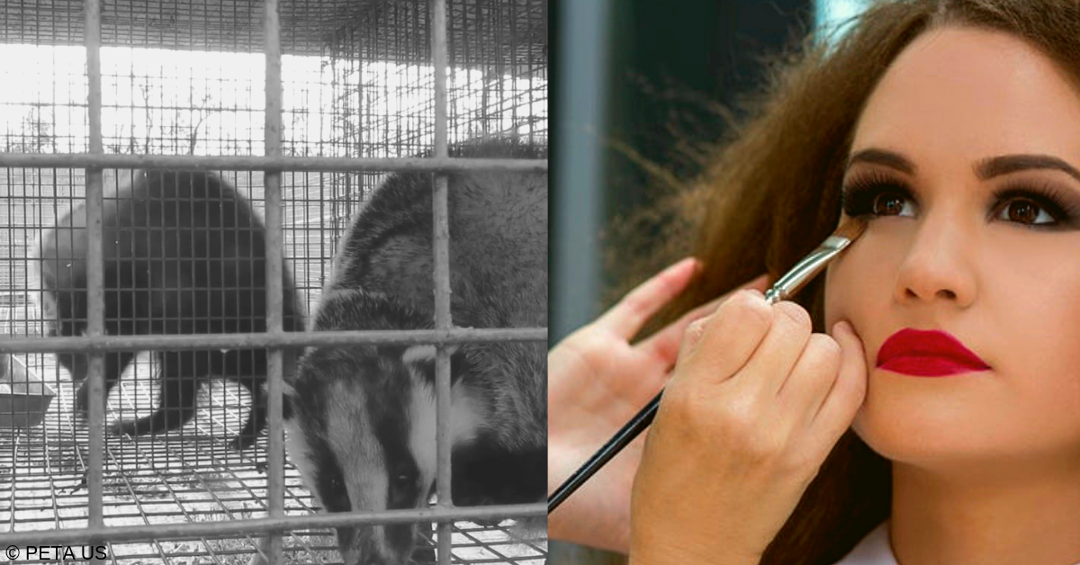 Urge Morphe to Stop Selling Badger-Hair Brushes | People for