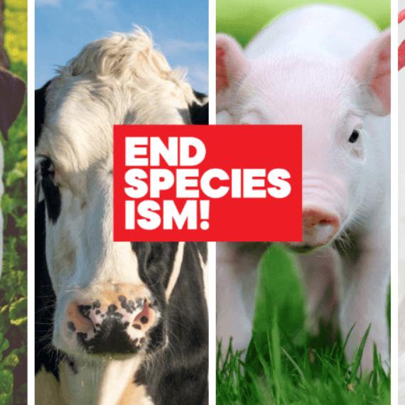 Pledge to #EndSpeciesism