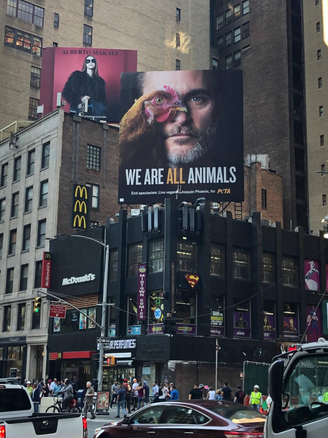 Резултат с изображение за hoakin feniks billboard new york