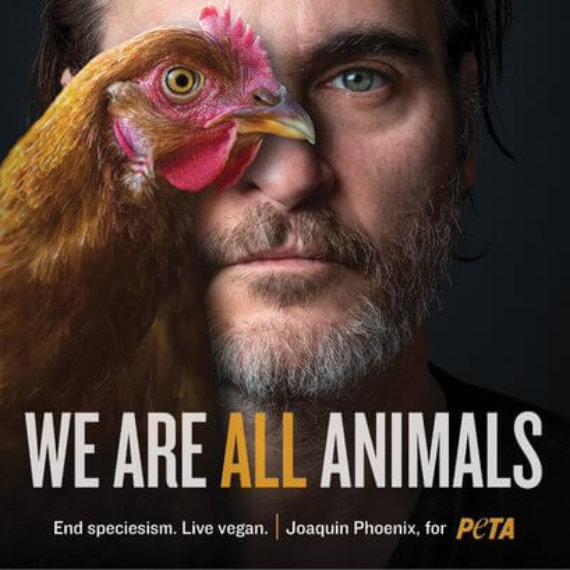 No Joke: Joaquin Phoenix Is a Hero to Animals