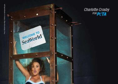 Charlotte Crosby Trapped Underwater in PETA Anti-SeaWorld Ad