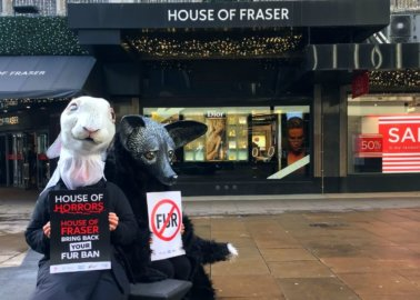 The Newest Frasers Group Shareholder Is … PETA US