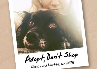 Tove Lo and Her Dog Star in 'Adopt, Don't Shop' Campaign