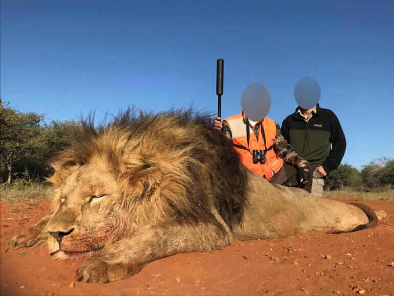 Image shows hunter posing with lion