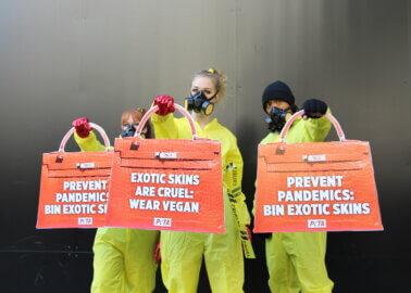 Hazmat-Clad Protesters Hit London Fashion Week