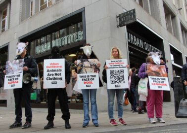 PETA Supporters Call For Urban Outfitters to Reject Animal Abuse