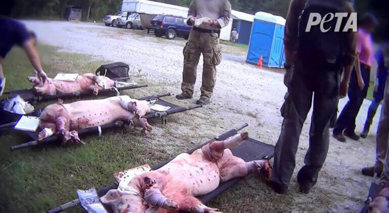 Image shows an example of trauma training from a US Marine unit