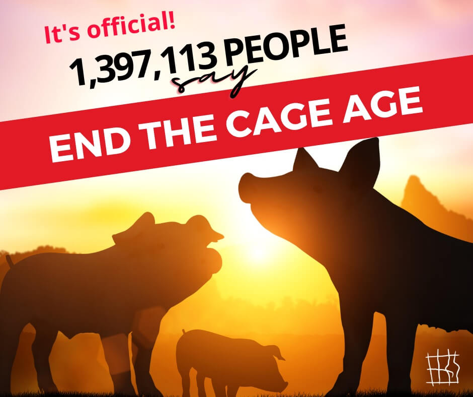 """Image shows the silhouette of pigs and a sunset. Text: """"It's official! 1,397,113 people say End the Cage Age."""""""