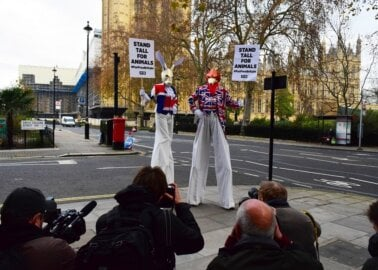 Protesters on Stilts 'Stand Tall for Animals' This Fur-Free Friday