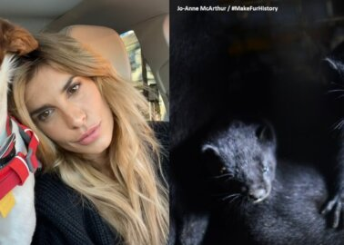 Elisabetta Canalis Wants Italy to Close Fur Farms