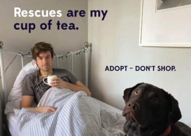 A DJ in PJs: Greg James Gives Adoption a Shout-Out in New PETA Campaign