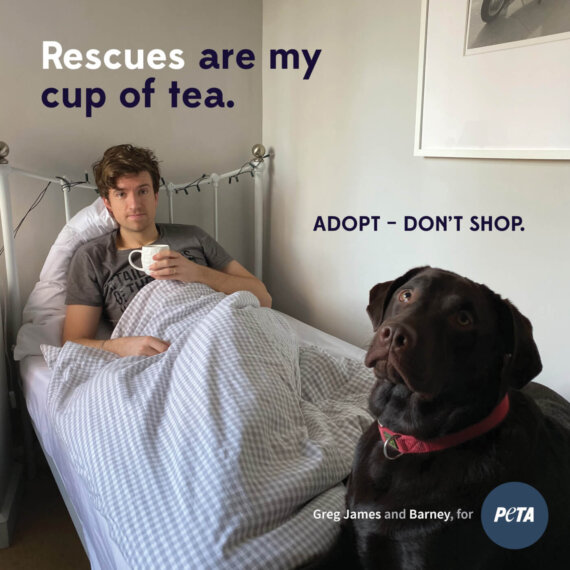 A DJ in PJs: Greg James Gives Adoption a Shout-Out