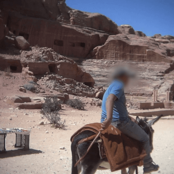 Help Stop the Suffering of Petra's Horses, Donkeys, Mules, and Camels
