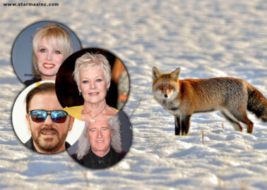 Celebrities and Animal Protection Groups Band Together for a #FurFreeBritain