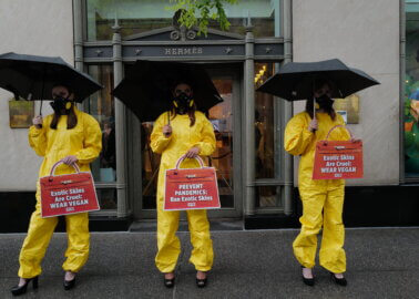 PETA US Protesters in Heels and Hazmat Suits Call On Hermès to Ban Exotic Skins