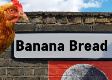 Would You Live on Banana Bread Lane?